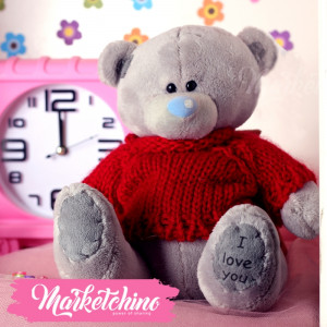 Toy Tatty Teddy