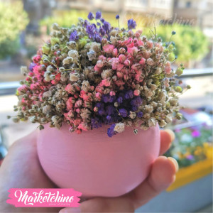 Decor Natural Baby Flower ( one  piece )